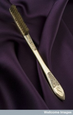 L0043833 Napoleon Bonaparte's Toothbrush