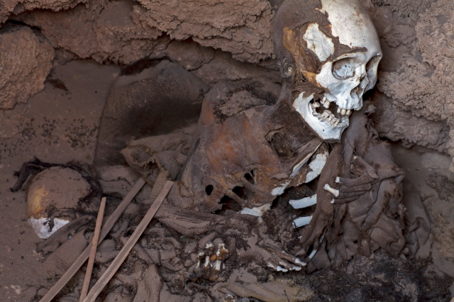 Mummy from an ancient burial at the Salar de Uyuni, Bolivia WEB